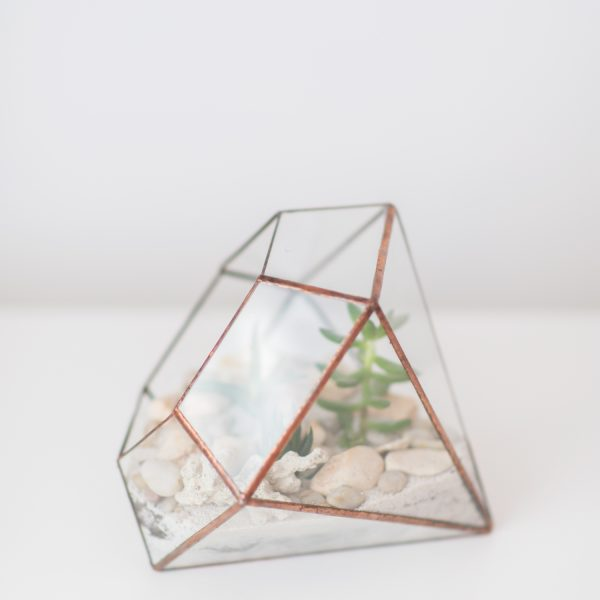 Living Fresh - Diamond Terrarium