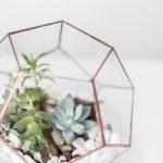 Living Fresh - Geometric Glass Terrarium