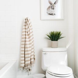 Living Fresh Oversized Turkish Towel Fawn