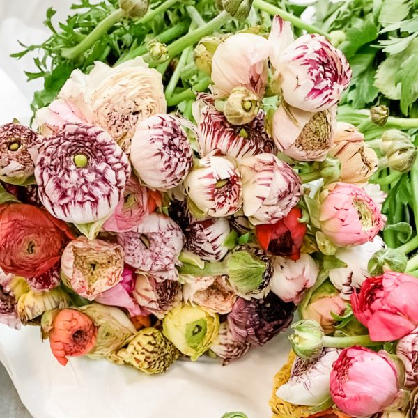 Living Fresh Flower and Plant Studio - Ranunculus Bunch