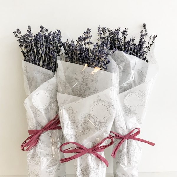 Living Fresh Flowers and Plant Studio - Dried Lavender