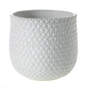 Living Fresh Flower and Plant Studio - Dot Pot Large