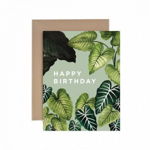 Living Fresh Flower and Plant Studio - Happy Birthday Alocasia Card
